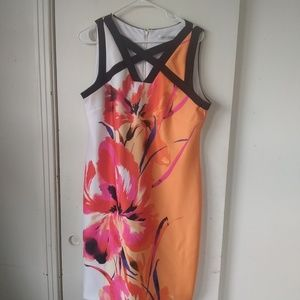 Sandra darren plus size ladies dress sz 14